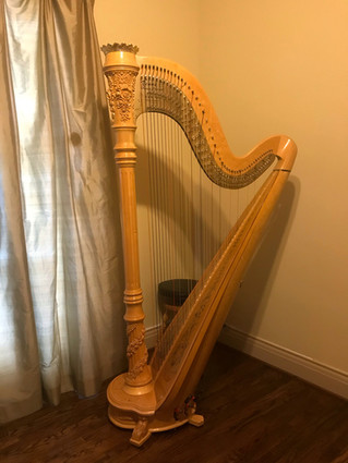 Venus Concert Grand #75 for Sale