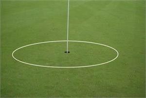 3' Chipping eGolfRing Target Circle