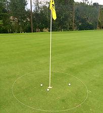 6' Chipping eGolfRing Target Circle