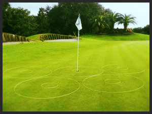 Coaching eGolfRing Pkg Golf Target Circle Rings