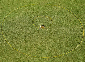 Chip and Putt eGolfRing Pkg Golf Circles