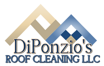 DiPonzio's Roof Cleaning-Orlando