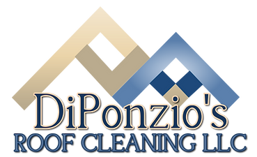 DiPonziou0027s Roof Cleaning