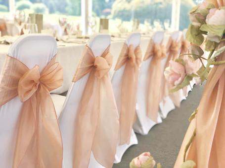 Blush Pink Silk Organza Bows