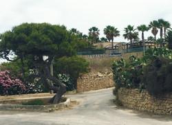 Ta' Frenc, Gozo, Malta