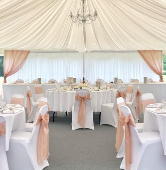 Blush Pink Silk Organza Bows with our matching Starlight Blush Pink Backdrop