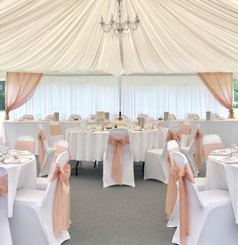 Blush Pink Silk Organza Bows with our matching Starlight Blush Pink Backdrop