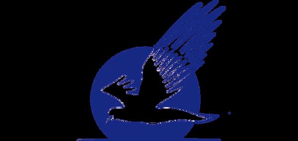 Логотип Большой копия копия.png