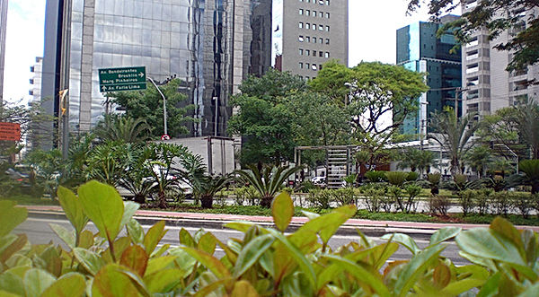 img_avenida_reurbanizacao.jpg