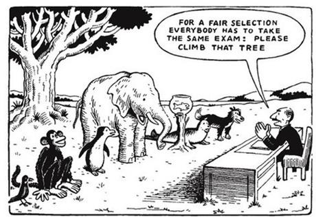 Standardized testing trap