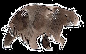Niedźwiedź.png