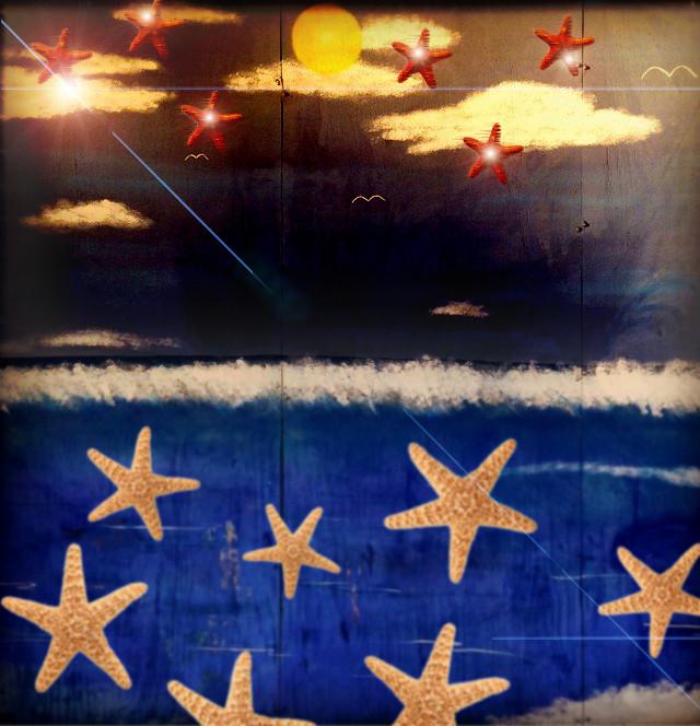 starfish stars flare mural.jpg
