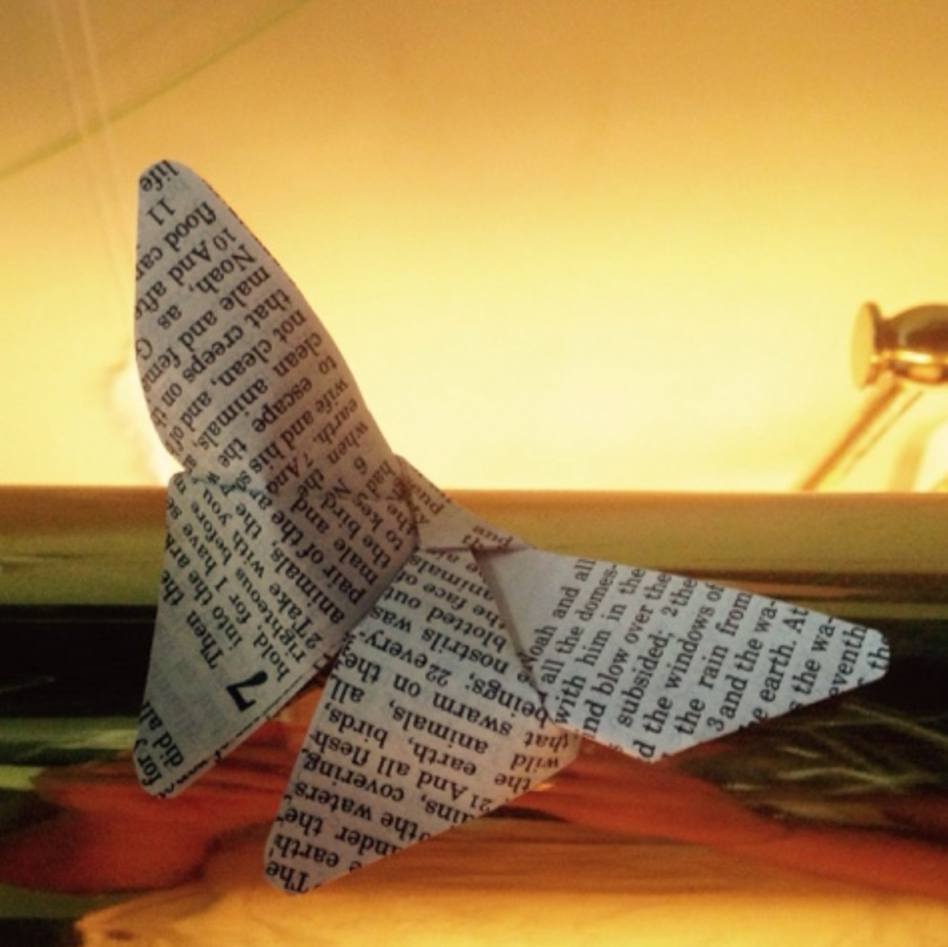 origami butterfly made from bible left by visitor