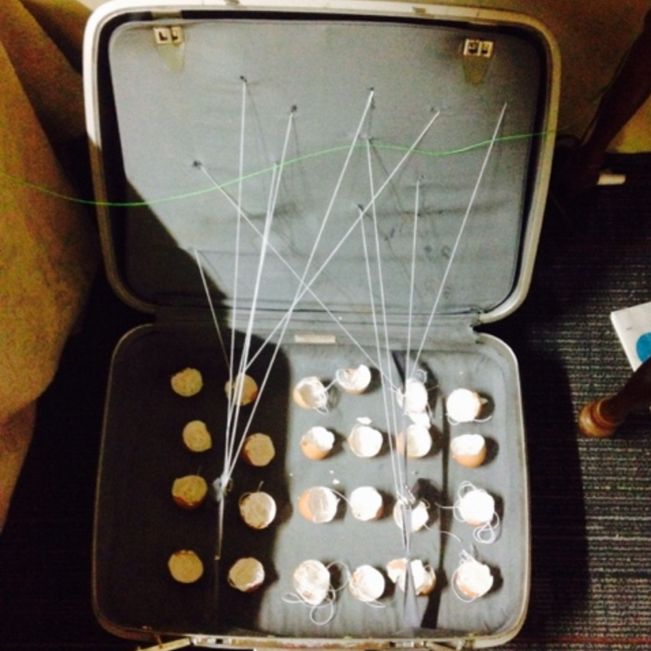 suitcase with broken eggs and string