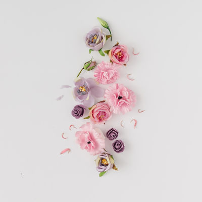 Creative layout made with pink and viole