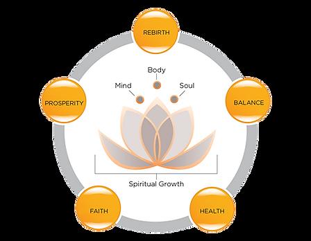 Senselifecoaching voor spirituele groei...een weg naar zelfkennis
