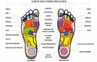 Le travail du pied: équilibre, proprioception, posture, mobilité