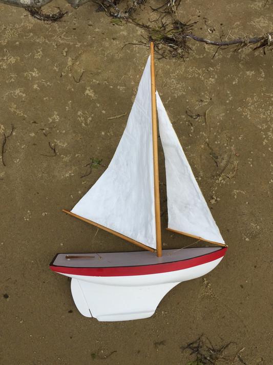 Pond Model Prototype