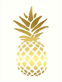 pineapple web.png