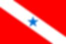 Bandeira_do_Pará-.png