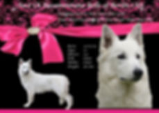 Khaleesi profile pink.jpg