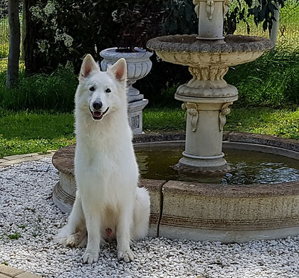 Leon sitting by fountain 1.jpg
