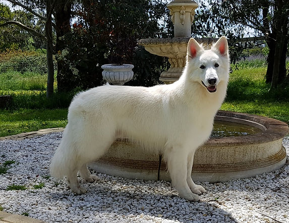 Leon standing by fountain.jpg