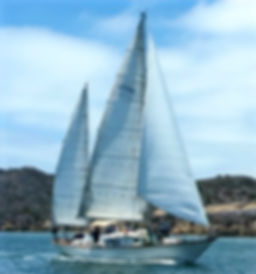 Te Vega Sailing