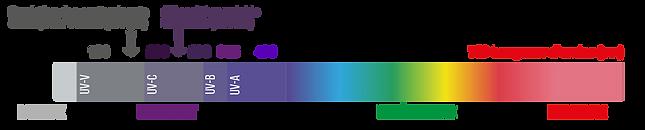 Spectre-lumière1.png