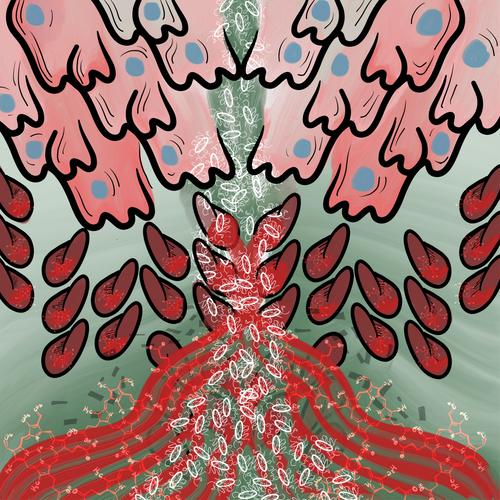 Skaar cover.PNG