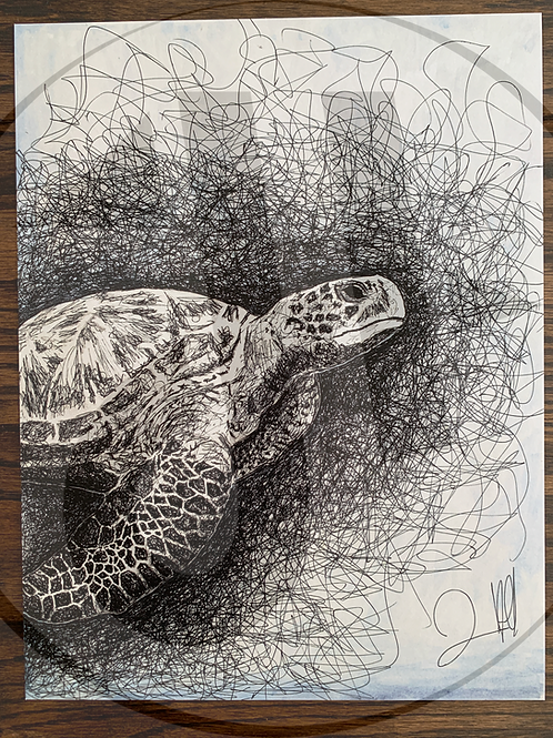 Truman the Turtle