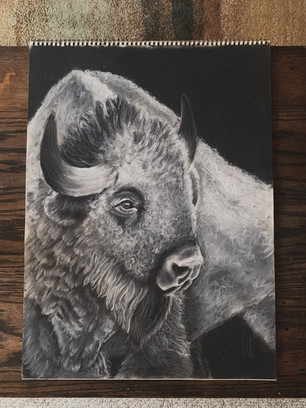 Charcoal, like a few of these, has a lot of different variables, and it is kind of hard to put a pin on a fixed price. Typically I work with charcoal at sizes like 11x14, 14x17, or 18x24 inches! Feel free to email with any questions at jaycehallart1@gmail.com