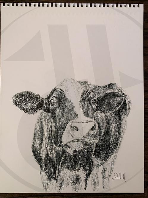 Bessie the Heifer