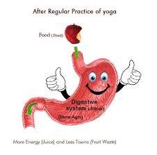 Digestive Health Tea