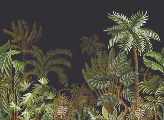 Dschungel Nacht