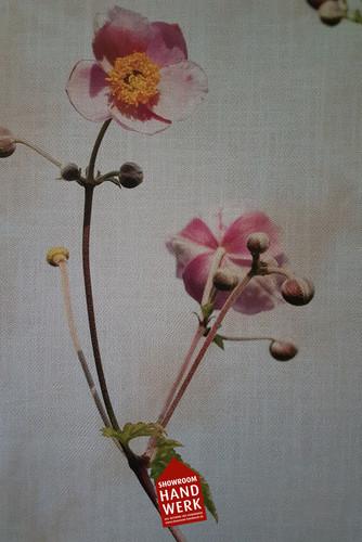 Tapete Blumen.jpg