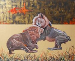 Lions Fighting 3