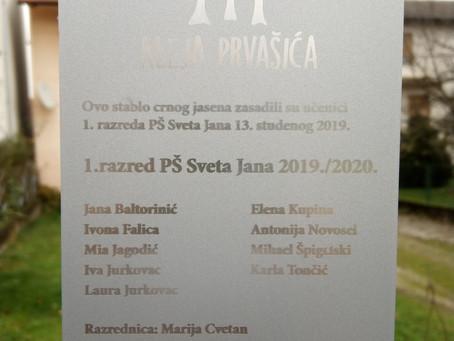 Aleja prvašića u Cvetkoviću