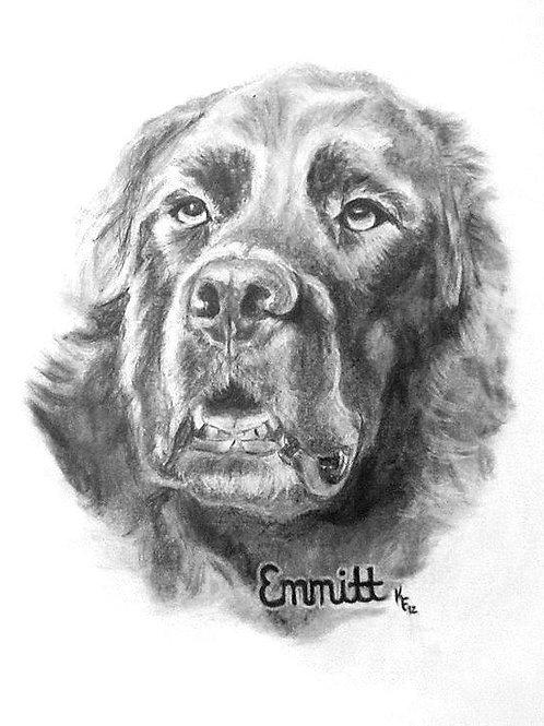 13x19 Custom Graphite Portrait