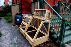 Garden and mesh 2.1