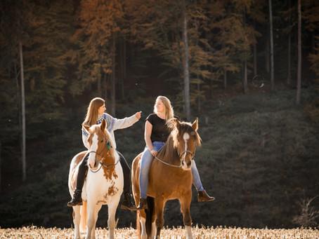 Pferde-Mensch-Shooting