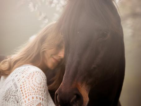 Pferde/Mensch-Shooting