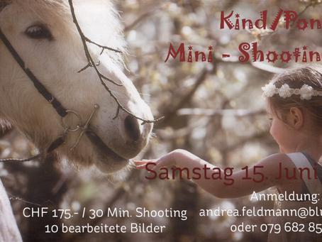 Kind/Pony Mini-Shooting Tag