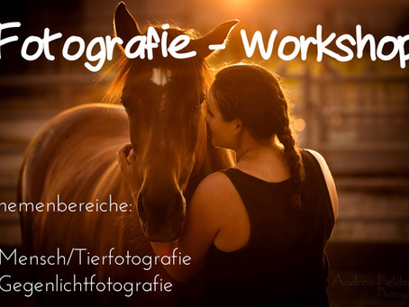 Fotografie - Workshop