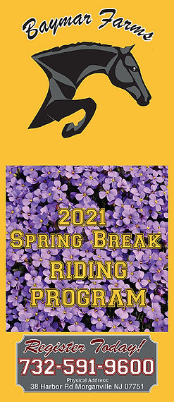 Baymar_Spring Break Brochure-Cover.jpg