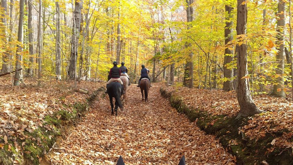 Highland Farm NJ Trail Access
