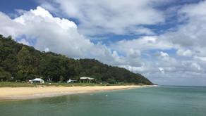 Is Tangalooma Island Resort worth visiting?