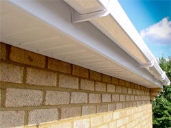 Clean gutters, fascia and soffits