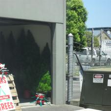 Tree sites , Christmas hampers 010.jpg