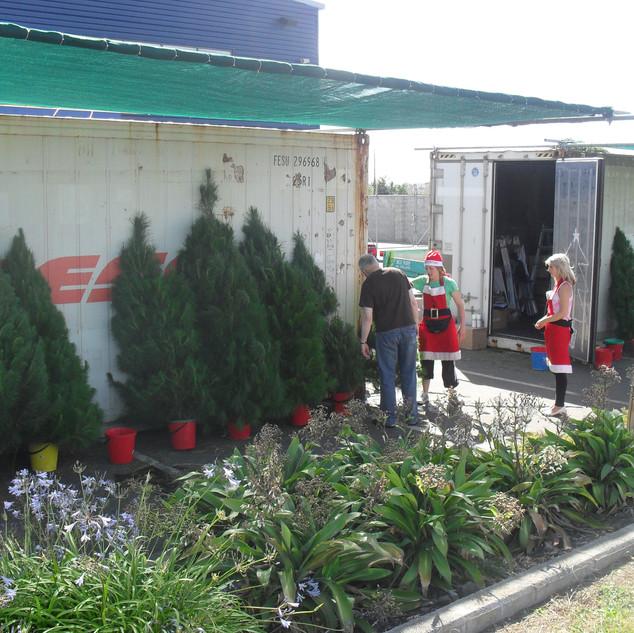 Tree sites , Christmas hampers 026.jpg